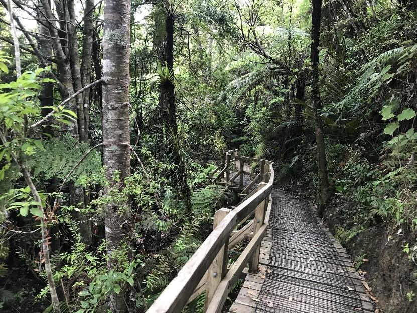 ニュージーランド 留学レポート from 小枝さん【2019年度】