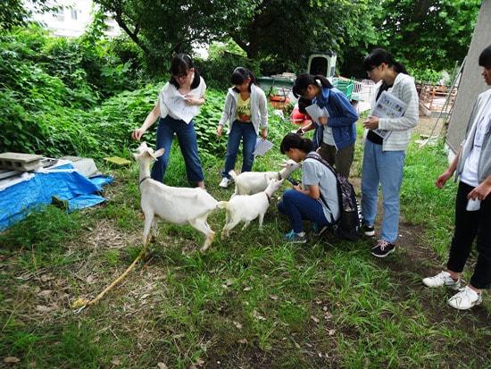 【中3】理系向けガイダンス@東京農工大学